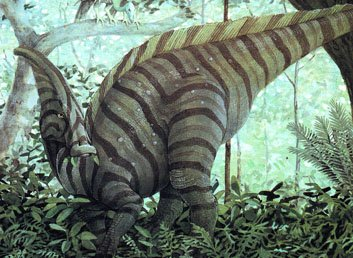 10 самых интересных динозавров