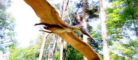летающие динозавры фото и названия