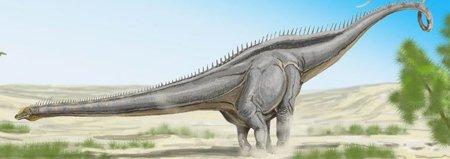 Сейсмозавр динозавр: фото, размеры