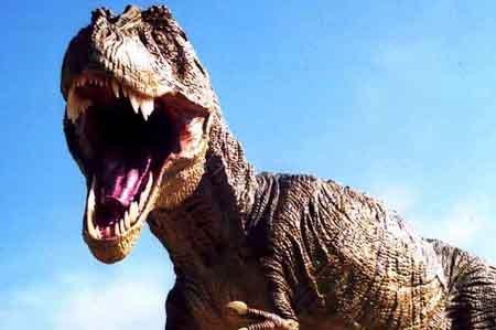 Тираннозавр Рекс: фото, картинки
