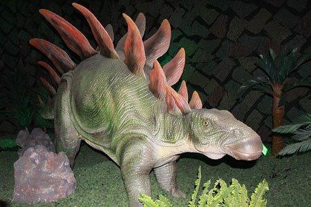 Интересные и познавательные факты о динозаврах: штат стегозавров