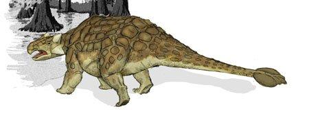 Динозавр с панцирем: можно ли считать неуязвимым?