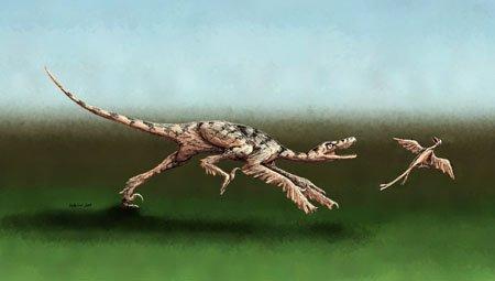 Бег динозавра: насколько быстрый?