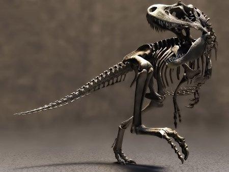 Древние останки динозавров найдены
