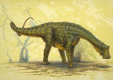 Открыт новый вид динозавров