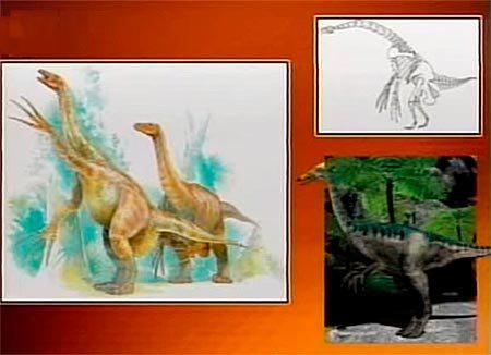 Птицы бывшие динозавры: мегалозавриды