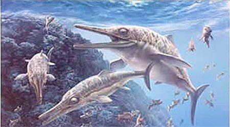 Для любознательных: ихтиозавры