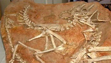 А вы знаете, что динозавры?