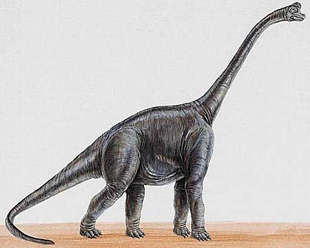 Самые необычные динозавры: ультразавр
