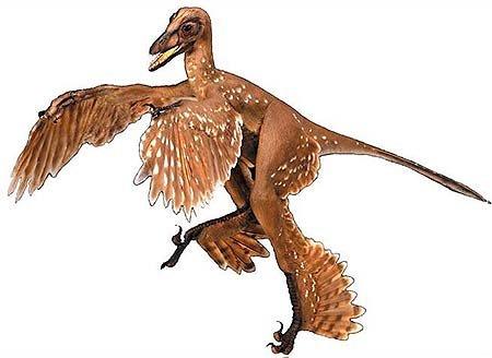 10 фактов о необычных динозаврах