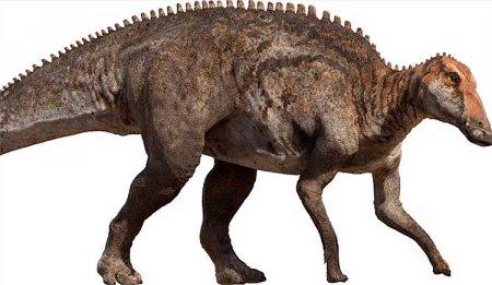 Эдмонтонский утконосый ящер - эдмонтозавр