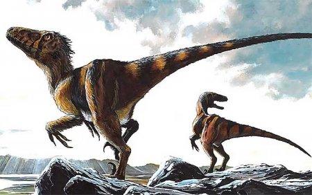 Cемейство хищных динозавров - Дромеозавриды