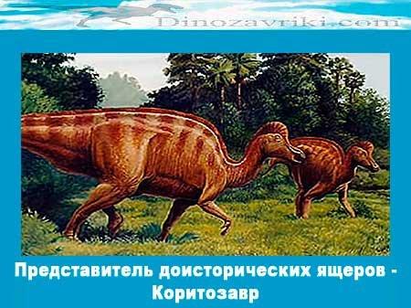 Представитель доисторических ящеров - Коритозавр