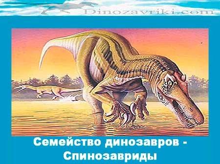 Спинозавриды: семейство динозавров