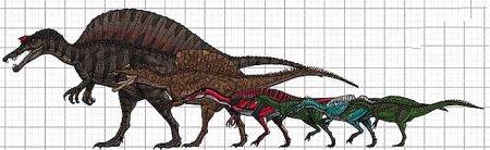 Спинозавриды: мелкие и крупные