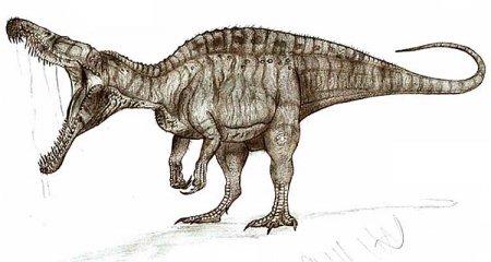 Спинозавриды: Cristatusaurus lapparenti