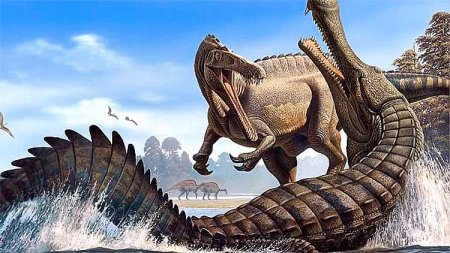 Спинозавриды: зубы
