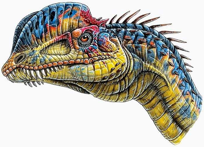 Картинки по запросу Дилофозавр