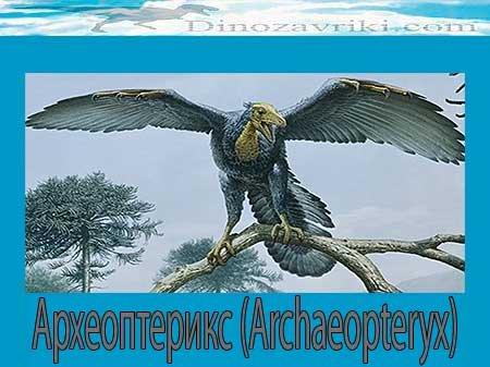 Археоптерикс: происхождение птиц от пресмыкающихся