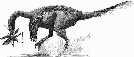 Эти удивительные динозавры как выглядел троодон
