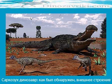 Динозавр саркозух: как был обнаружен, внешнее строение