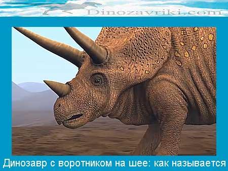 Динозавр трицератопс с воротником на шее