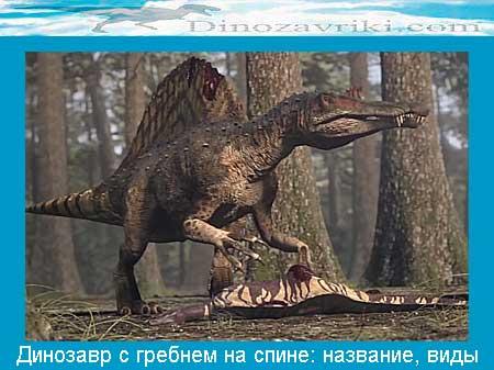 Динозавр с гребнем на спине: название, виды