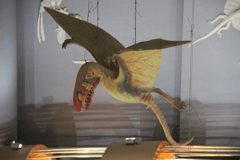 Птерозавр   Pterosaur