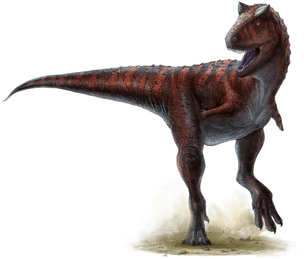 Карнотавр - семейство абелизавров