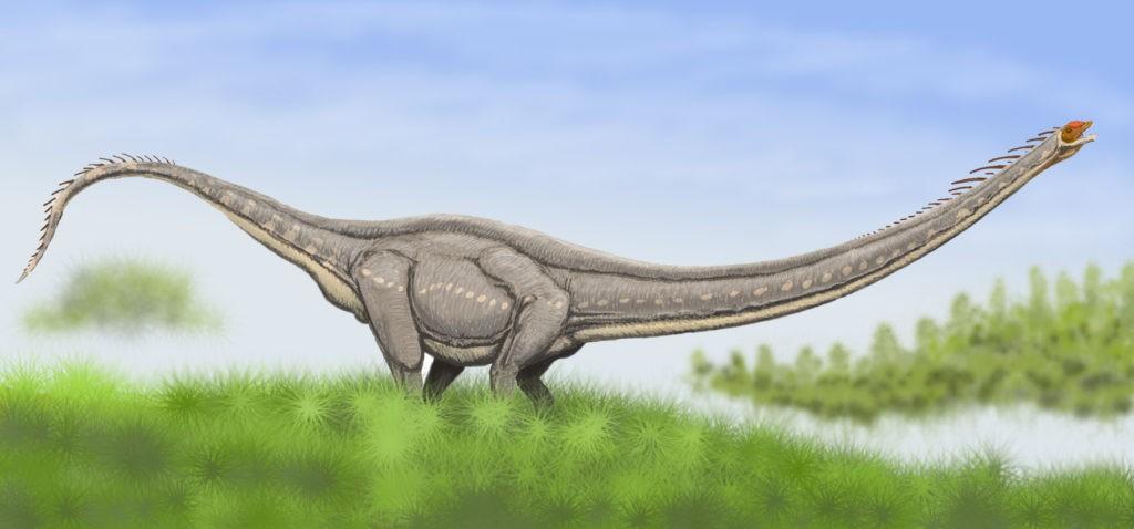 Маменчизавр. Ящер юрского периода с фото