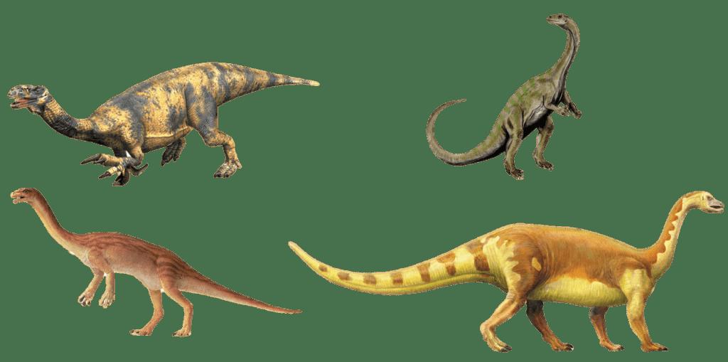 Прозавроподы