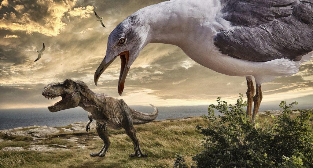 Приведшие к появлению птиц динозавры миллионы лет уменьшались в размерах