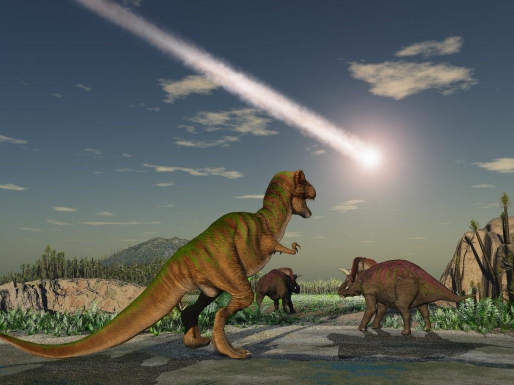 Почему вымерли динозавры и до сих пор это остаётся загадкой прошлого