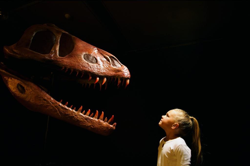 Правда, что динозавры всё ещё живы?