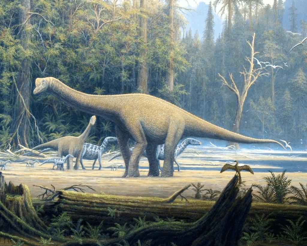 Жизнь динозавров на земле: где обитали, чем питались, как размножались и взаимодействовали друг с другом?