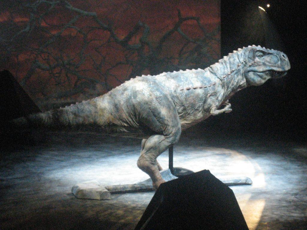 Когда жили динозавры: от кого произошли, сколько лет прошло с тех пор и были ли тогда люди?