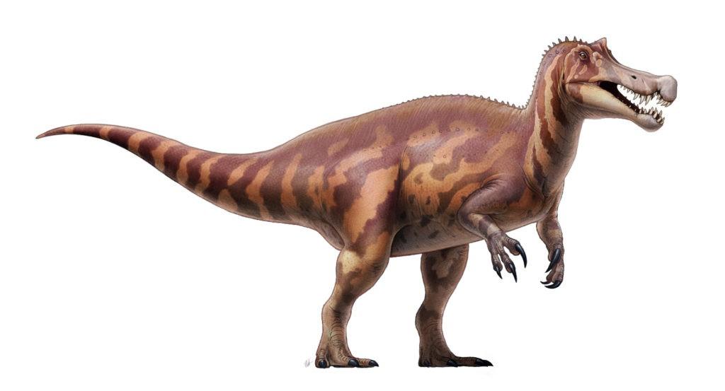 Ирритатор динозавр: характерные особенности, образ жизни, обнаружение останков
