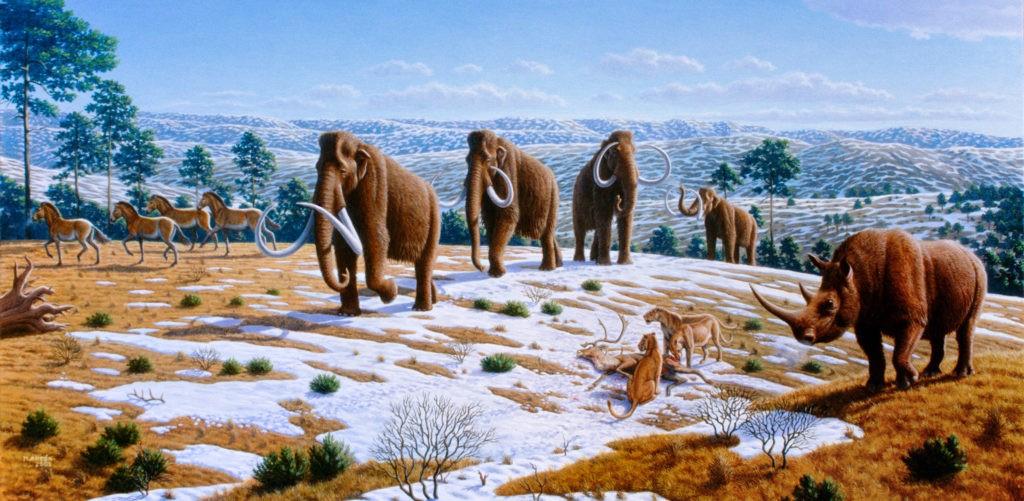 Ледниковые периоды: заключительный и будущий