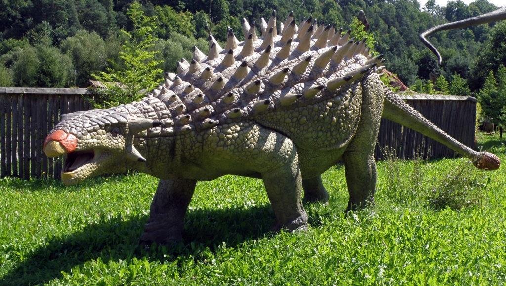 Анкилозавр или динозавр с булавой на хвосте: описание и бойцовские качества