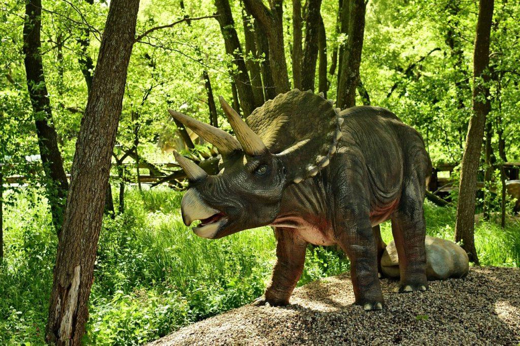 Трицератопс или динозавр с воротником на шее: описание и прочие факторы, почему получил такое название
