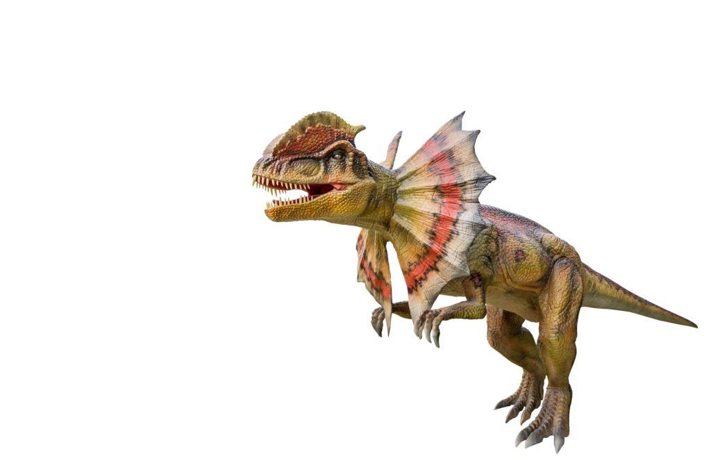 Динозавр с воротником: характер трицератопса и правда о дилофозавре