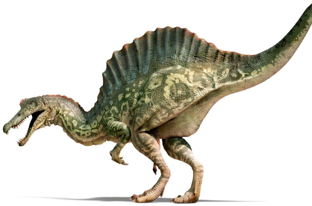 Как называется динозавр с гребнем на спине: основные виды и образ жизни
