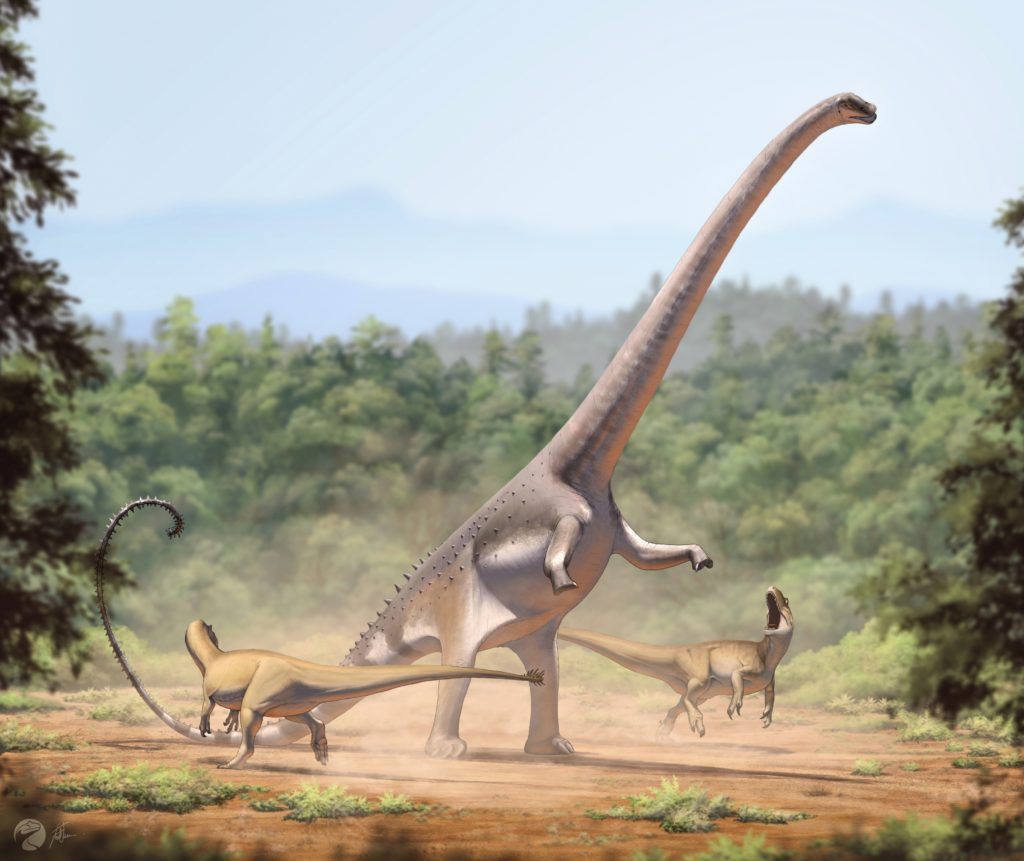 Барозавр – один из самых больших динозавров