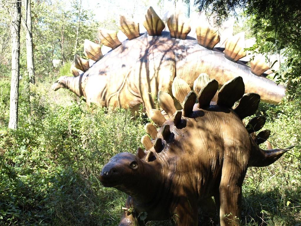 Стегозавр: длина
