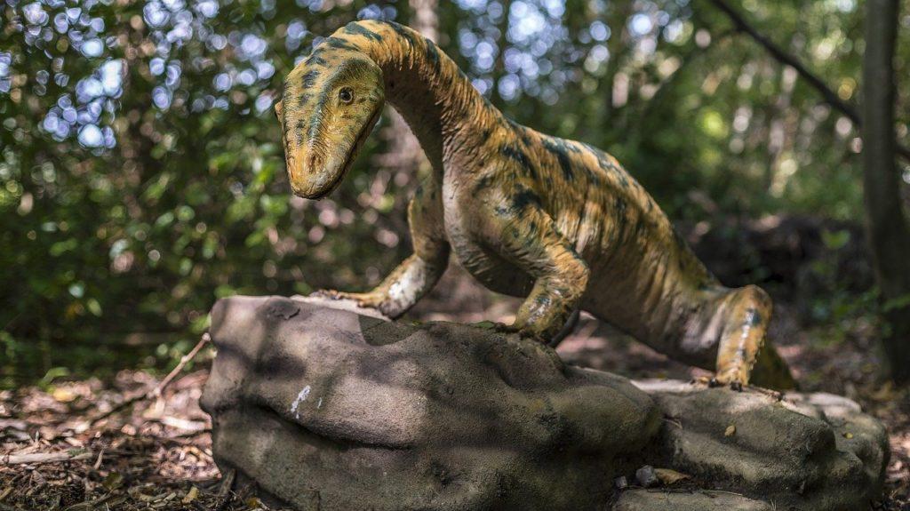 Рептилия динозавр на камне