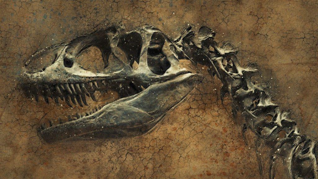 Фон скелет динозавра