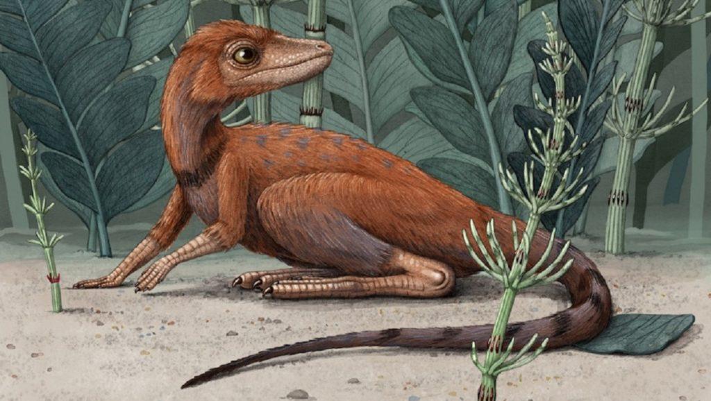 10 живых потомков и родственников динозавров